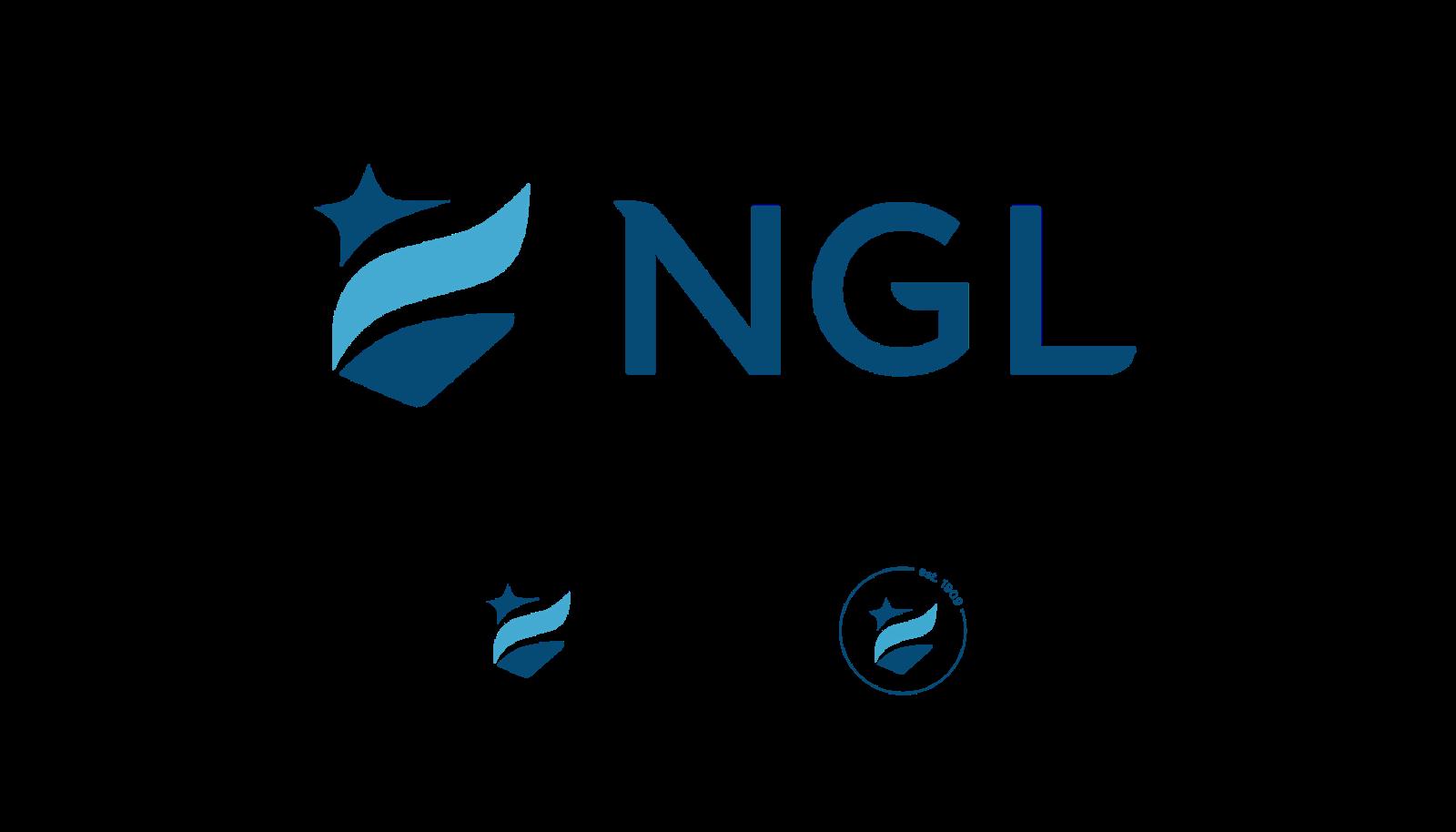 ART NGL VIS Case Study Logo A 1