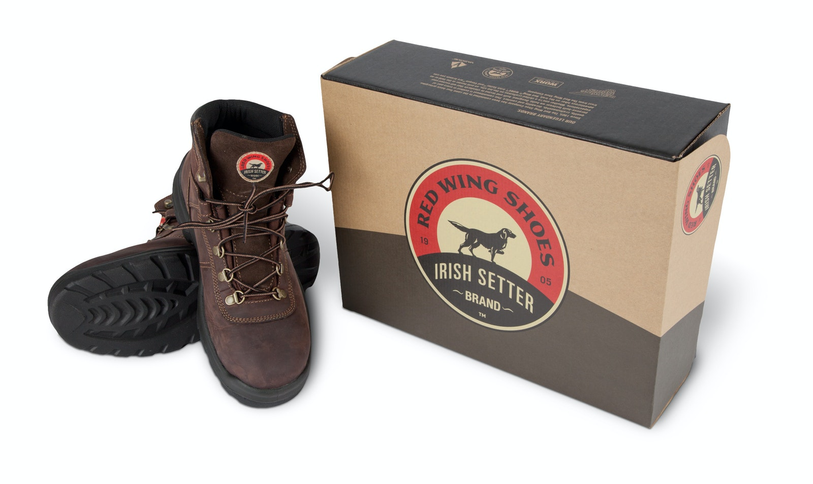 Irishsetter shoebox
