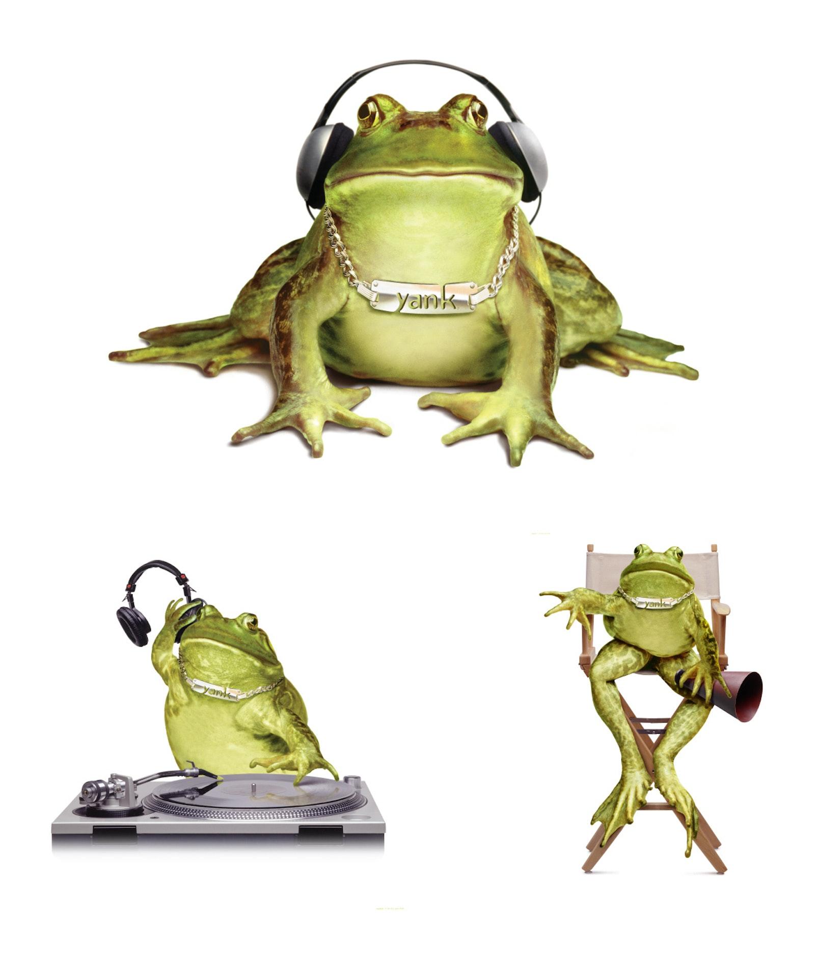 Yank Frogs